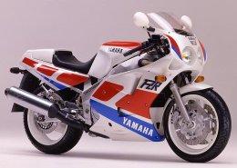 Coloris du modèle Yamaha FZR 1000 Exup