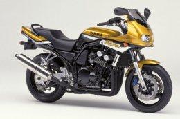 Coloris du modèle Yamaha FZS 600 Fazer