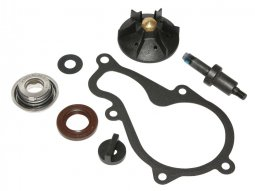 Kit réparation pompe a eau 1Tek Origine Piaggio Beverly 350 2012-