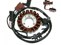 Stator Top Performances pour Piaggio Vespa PX 125 98-16